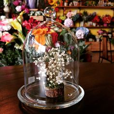 In a dome of great full  @ La Fleur de Me (flower shop & cafe bar) Bangkok IG : lafleurdeme Line: lafleurdeme Tel: 083 686 2550 www.lafleurdeme.com lafleurdeme@hotmail.com