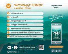 Przed wyjściem w góry ściągnij aplikację na smartfona - silesion.pl