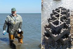 Oyster Restoration at Man and Boy Marsh | The Nature Conservancy