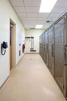 Veterinary hospital runs