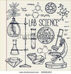 Science lab objects doodle style sketch,Back to school. Alchemy and vintage medieval science. Note book page paper. - buy this vector on Shutterstock & find other images.