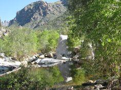 Sabino Canyon Tucson, Arizona