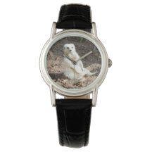 White_Meerkat,_Ladies_Black_Leather_Watch. Wrist Watches