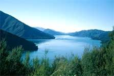 These walking tracks in Pelorus Sounds are boat access only. Marlborough Sounds, Parks And Recreation, Walks, New Zealand, Places To See, Things To Do, To Go, Adventure, Mountains