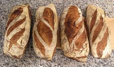 breadbakingbassplayer's blog   The Fresh Loaf
