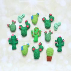 We do love a cactus!