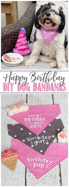 Celebrate your pup's birthday with these cute DIY birthday bandanas! #ad Customize them with your #cricut Joy and iron-on vinyl. Easy to make with no sewing required. Free designs included. / #birthday #dogbandana #cricutmade #birthdaybandana #collar #petcrafts #petDIY #nosew Homemade Dog Treats, Iron On Vinyl, Birthday Diy, Animal Crafts, Sewing Basics, Diy Stuffed Animals, Dog Bandana, Bandanas, Easy Diy Projects