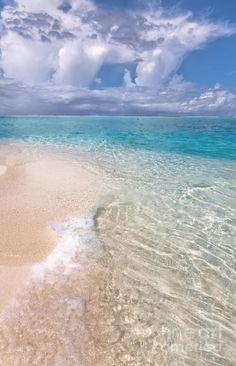 Pristine Beach Beauty