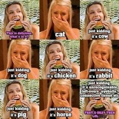Quotes Vegan, Vegan Memes, Vegetarian Quotes, Vegan Funny, Vegan Facts, Why Vegan, Vegan Animals, Stop Eating, Vegan Lifestyle