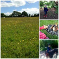 Glamping Farm Stays in Devon