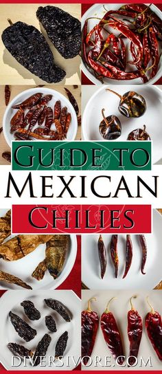The Diversivore Guide to Mexican Chilies - A comprehensive primer on the most important Mexican chilies, plus links to detailed guides on finding, choosing, and using the different varieties. food Ultimate Guide to Mexican Chili Peppers Authentic Mexican Recipes, Mexican Food Recipes, Mexican Desserts, Mexican Kitchens, Mexican Cooking, Mexican Dishes, Mexican Drinks, Gourmet Recipes, Cooking Recipes