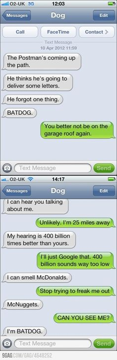 Funny Text Messages Best Of New Texts From Dog Really thats What You Said Funny Dog Texts, Funny Text Fails, Funny Text Messages, Funny Animal Memes, Funny Dogs, Funny Quotes, 9gag Funny, Animal Humour, Hilarious Animals
