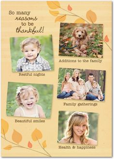 Many Reasons - Happy Thanksgiving Greeting Cards from Treat.com
