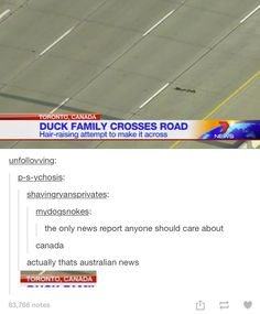 it's an Aussie news channel tho<<< it says TORONTO 《 The location of the ducks was in Toronto, the chanel could be an Aussie chanel.<<< on behalf of all Canadian citizens ( including the moose ) i apologize for the inconvenience Australia