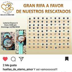 Apoyando a nuestros hermanos Proteccionistas de @huellas_de_eterno_amor para comprar los números y apoyar visita su página o escríbenos 5804242182285 para darte sus datos desde cualquier parte del mundo puedes aportar tu granito de arena #proteccionista #perros #gatos #sos #venezuela