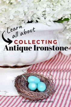 A Guide to Vintage & Antique Ironstone [History & Values] Car Boot Sale, American Restaurant, Chocolate Pots, Vintage Antiques, Backdrops, History, Collection, Historia, Backgrounds