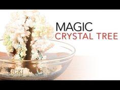 Magic Crystal Tree - SICK Science | Science Experiments | Steve Spangler Science