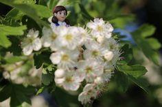 Fuchiko san and flowers
