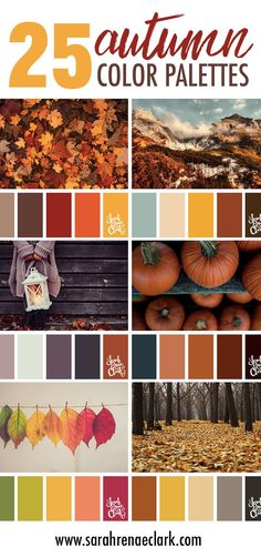 25 Autumn color schemes | Click for more fall color combinations, mood boards and seasonal color palettes at https://sarahrenaeclark.com/