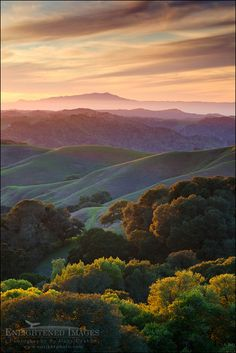 Sunset over the green east bay hills looking toward Mount Tamalpais in distance, from Briones Regional Park, Contra Costa County, California