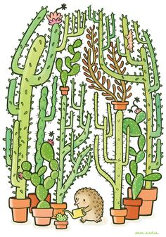 Hedgehog watering a cactus | Illustration by Erica Sirotich. This is Quilliam, by the way!