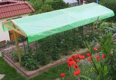 Bildergebnis für tomatenhaus selbst bauen