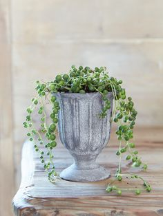 NEW Small Zinc Vase - NEW FOR SPRING - Outdoor Living