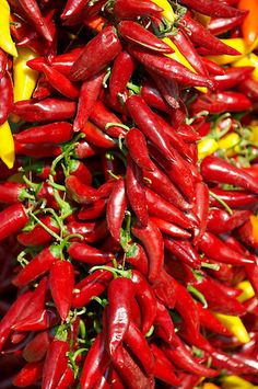Photos of fresh paprika chillies from Hungary by food photographer Paul Williams to download