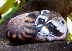 frog painted rock | Hand painted rocks.Wildlife animals painted on stone.