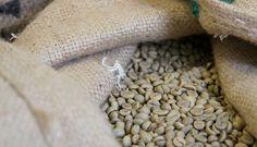 Genuss Kaffee Bohne Shops, Food, Coffee Beans, Tents, Meals, Retail Stores