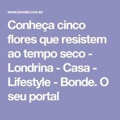 Conheça cinco flores que resistem ao tempo seco - Londrina - Casa - Lifestyle - Bonde. O seu portal