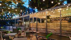 Shake Shack, One Decade, Cafe Shop, Environment, Building, Outdoor Decor, Restaurant Ideas, Custom Furniture, Hospitality