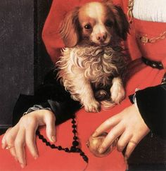 BRONZINO Agnolo di Cosimo - Italian mannerism (Florence 1503 - 1572)  ~ Portrait of a Lady with a Puppy (detail1532