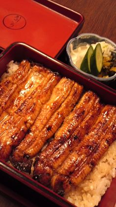 Unaju: Japanese Traditional Food, Eel on Rice with Tare Sauce