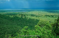 Forested volcanic crater on the crater track with Lake George in the background, Queen Elizabeth National Park, Uganda.