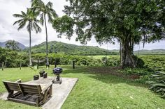 Amazing New Listing! Beautiful View form this Kailua home Carvill Sotheby's International Realty