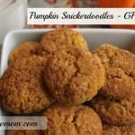 Pumpkin Snickerdoodles (gluten, dairy, egg and sugar free options)