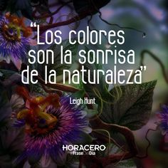 """""""Los colores son la sonrisa de la naturaleza"""" Leigh Hunt #frases #citas #frasedeldía"""