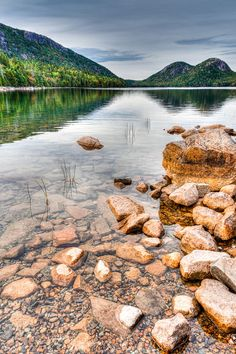 There are 4 campgrounds in Acadia National Park. Campers rate: best for RV camping, tent campsites, closest to the ocean, quietest, best for hiking. Camping With A Baby, Go Camping, Family Camping, Private Campgrounds, Acadia National Park Camping, America And Canada, North America, Whale Watching Tours, Travel Activities