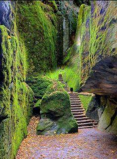 Laverna, Tuscany, Italy