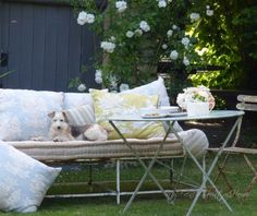 cherries, new cushions and that dog - MY FRENCH CO...