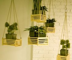 Good way to have plants in a kids room but to keep the kids out of them
