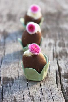 Mousse au chocolat blanc dans l'oeuf