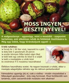vadgesztenye mosáshoz Baked Potato, Sprouts, Potatoes, Baking, Vegetables, Ethnic Recipes, Potato, Bakken, Vegetable Recipes