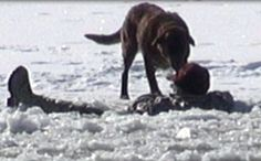 This loyal pooch waited 30 minutes for the rescue of his owner.