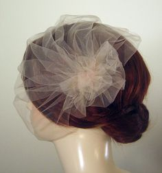 gorgeous birdcage veil