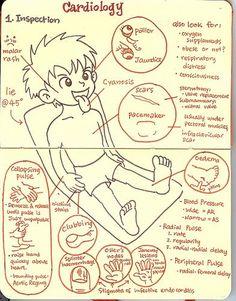 cardiological assessment - Google keresés
