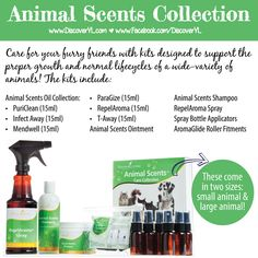 Animal Scents Collection | Young Living Essential Oils