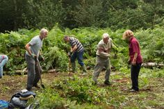 Local Chiltern Society volunteers working on Marlow Common near Marlow Bucks