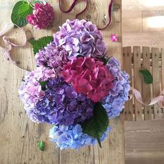 Tu chiamale se vuoi...emozioni #colorsilove #autumncolors #autumncollection #fall #autunno #hydrangea #ortensie #autumniscoming #autumnisintheair #onmytable #homesweethome #homecoming #homedecor #flowersilove #shabby #shabbychic #styling #stylist #homestyle #homestyling #flowerstyle #flowerstyling